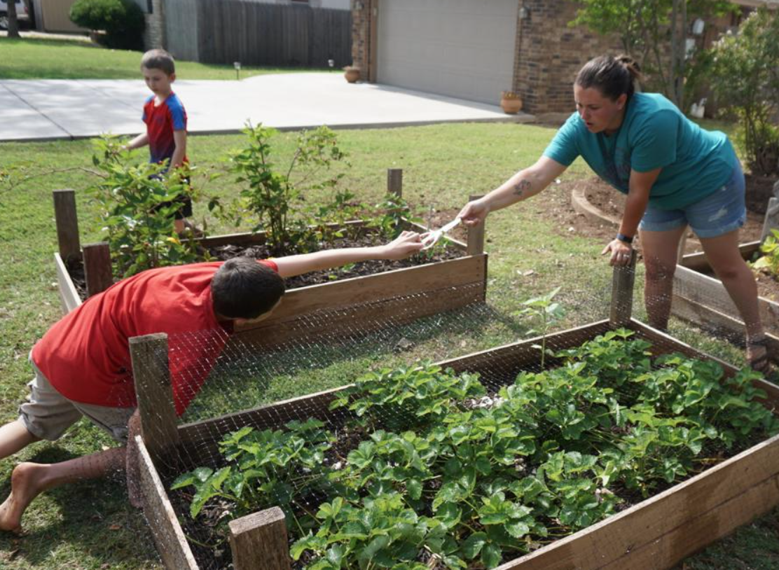 Gardening can teach life lessons